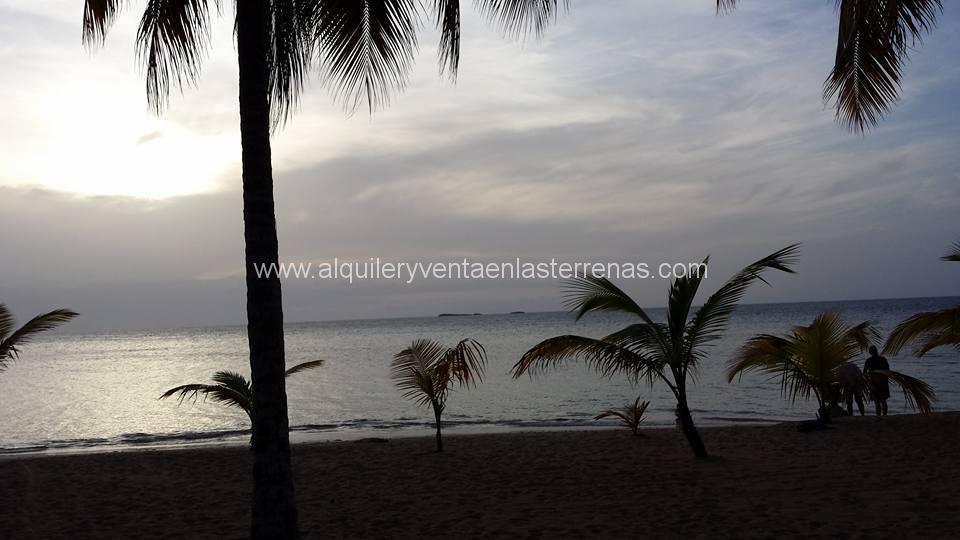playa las ballenas las terrenas, Alquiler de villas en Las Terrenas, Alquiler en Las Terrenas