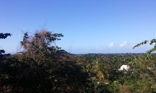 Terreno Solar entrada de Playa Bonita , alquiler y venta en las terrenas