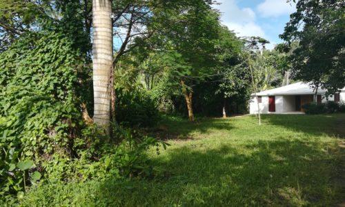 Terreno en venta La Ceiba, Alquiler y venta en las terrenas